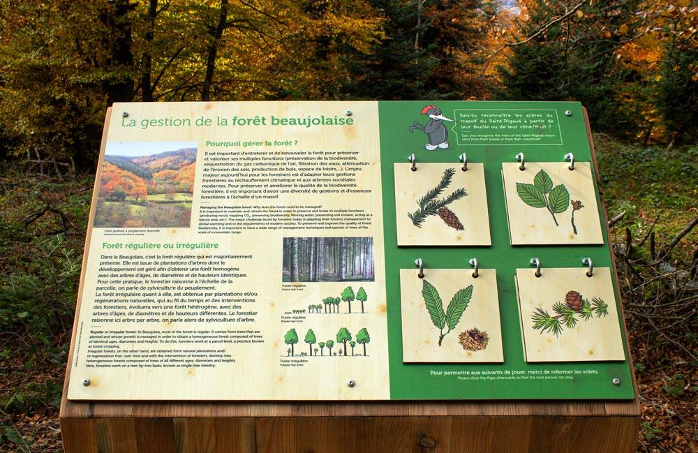 panneau signalétique avec trappes à soulever, mise en page et illustrations sur le thème de la forêt